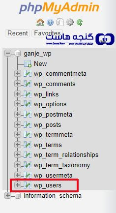 select wp users