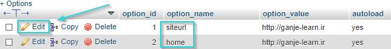 """ویرایش مقادیر """"siteurl"""" و """"home"""""""