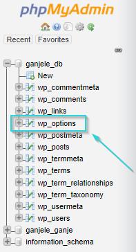 phpmyadmin-wp-options ssl wp