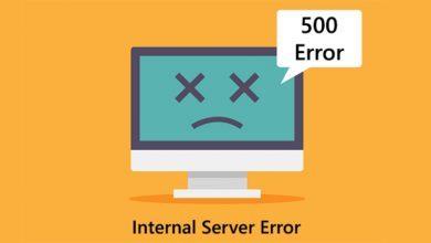 تصویر از آموزش رفع خطای Internal Server Error